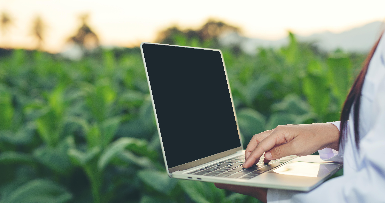 63,2% da população rural da América Latina não tem acesso à internet