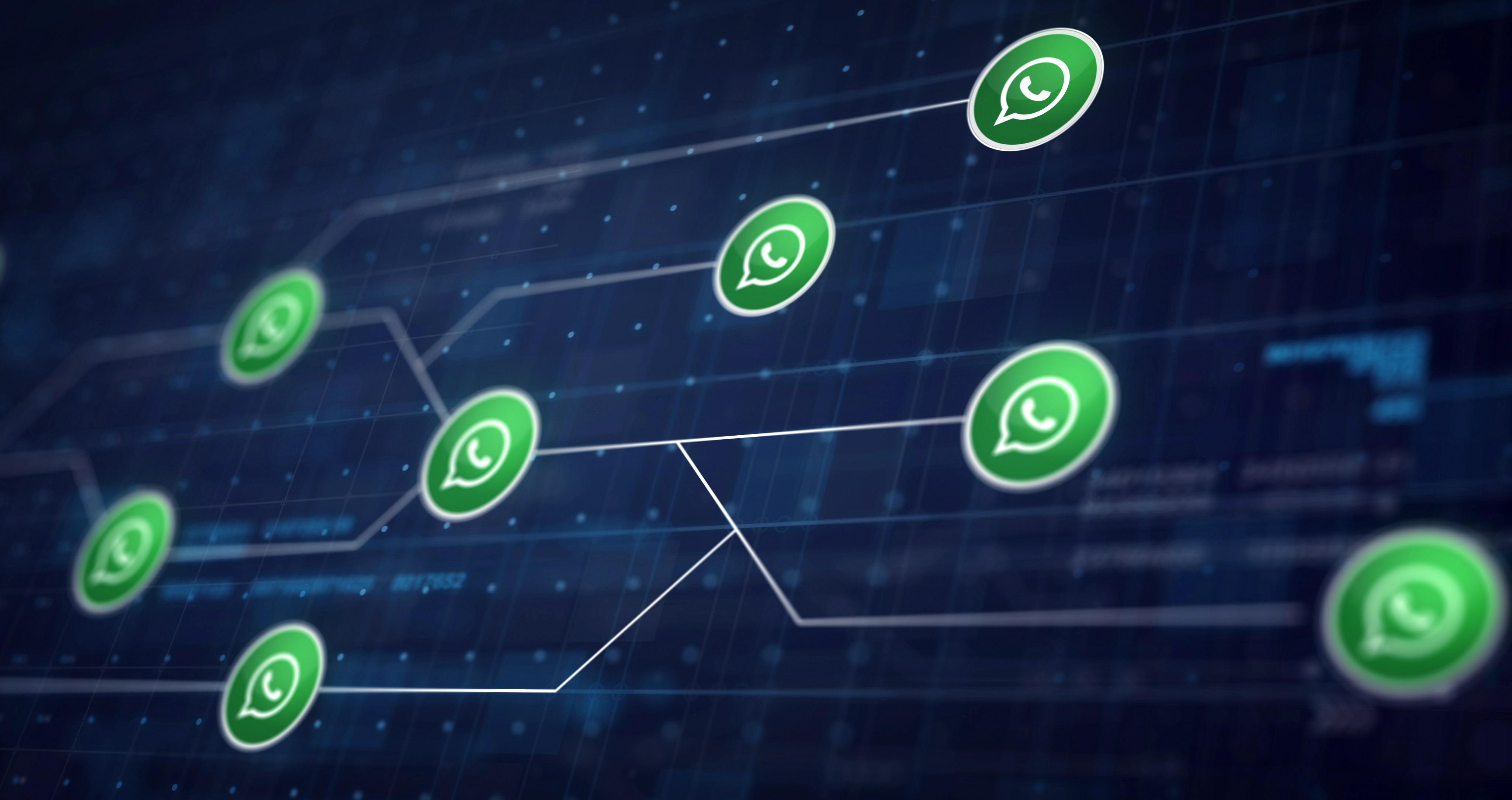 Usuários do whatsapp poderão ter contas suspensas